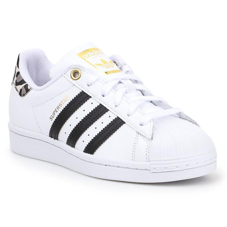 Buty adidas Superstar W FX6101 białe