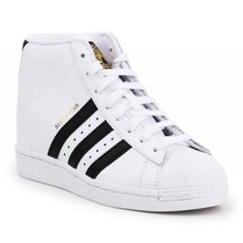 Buty adidas Superstar Up W FW0118 białe