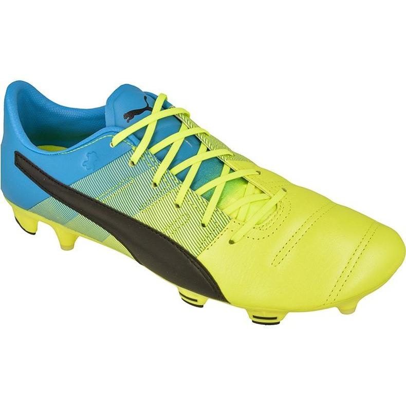 Buty piłkarskie Puma evoPOWER 1.3 FG M Leather 10352701