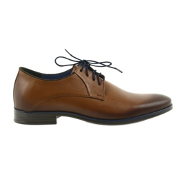 Pantofle brązowe męskie Nikopol 1644