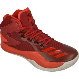 Buty koszykarskie adidas Derrick Rose Dominate IV M BB8179