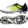 Buty piłkarskie adidas Ace 17.4 FxG M białe