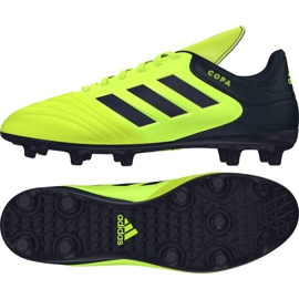 Buty piłkarskie adidas Copa 17.3 Fg M S77143 wielokolorowe wielokolorowe