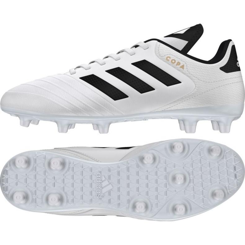 Buty piłkarskie adidas Copa 18.3 Fg M BB6358 białe białe