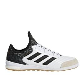 Buty halowe adidas Copa Tango 18.1 białe