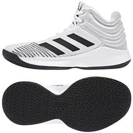Buty koszykarskie adidas Pro Spark 2018 białe