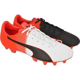 Buty piłkarskie Puma evoSPEED 4.5 Tricks Fg M 10359203