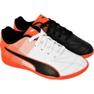 Buty halowe Puma Adreno Ii It Jr 10347607 biały, czarny wielokolorowe