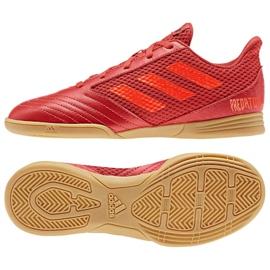 Buty halowe adidas Predator 19.4 In Sala Jr CM8552 czerwone wielokolorowe