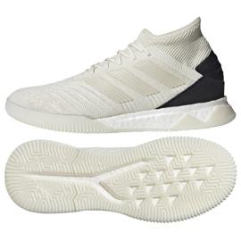 Buty halowe adidas Predator 19.3 IN M D97965 Profesjonalny