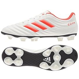 Buty piłkarskie adidas Copa 19.4 Sg M D98067 białe wielokolorowe