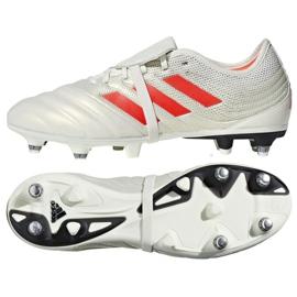 Buty piłkarskie adidas Copa Gloro 19.2 Sg M G28989 białe wielokolorowe
