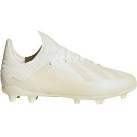 Buty piłkarskie adidas X 18.1 FG Jr DB2430