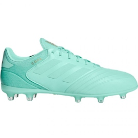 Buty piłkarskie adidas Copa 18.2 FG M DB2446 niebieskie