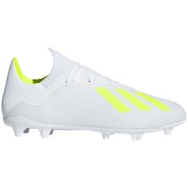 Buty piłkarskie adidas X 18.3 Fg M BB9368