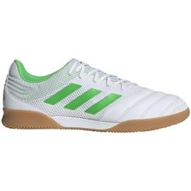 Buty halowe adidas Copa 19.3 In Sala M BC0559 białe biały