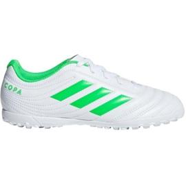 Buty piłkarskie adidas Copa 19.4 Tf M D98072