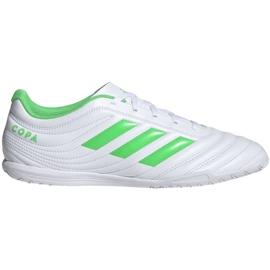 Buty halowe adidas Copa 19.4 In M D98075 białe białe