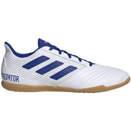Buty halowe adidas Predator 19.4 In Sala M D97974