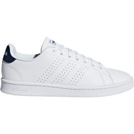 Białe Buty adidas Advantage M F36423