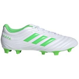 Buty piłkarskie adidas Copa 19.4 Fg M D98069 białe biały, zielony