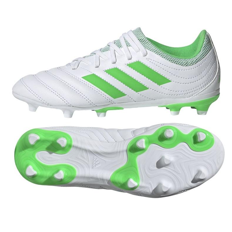 Buty piłkarskie adidas Copa 19.3 Fg Jr D98081 białe biały, zielony
