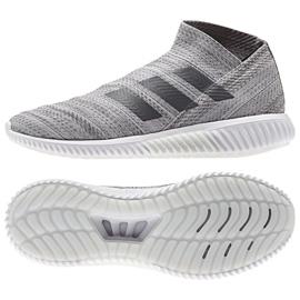 Buty adidas Nemeziz 18.1 Tr M BC0560 szare szary/srebrny