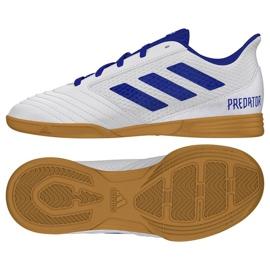 Buty halowe adidas Predator 19.4 In Sala Jr CM8553 białe wielokolorowe