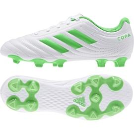 Buty piłkarskie adidas Copa 19.4 Fg Jr D98089 biały, zielony
