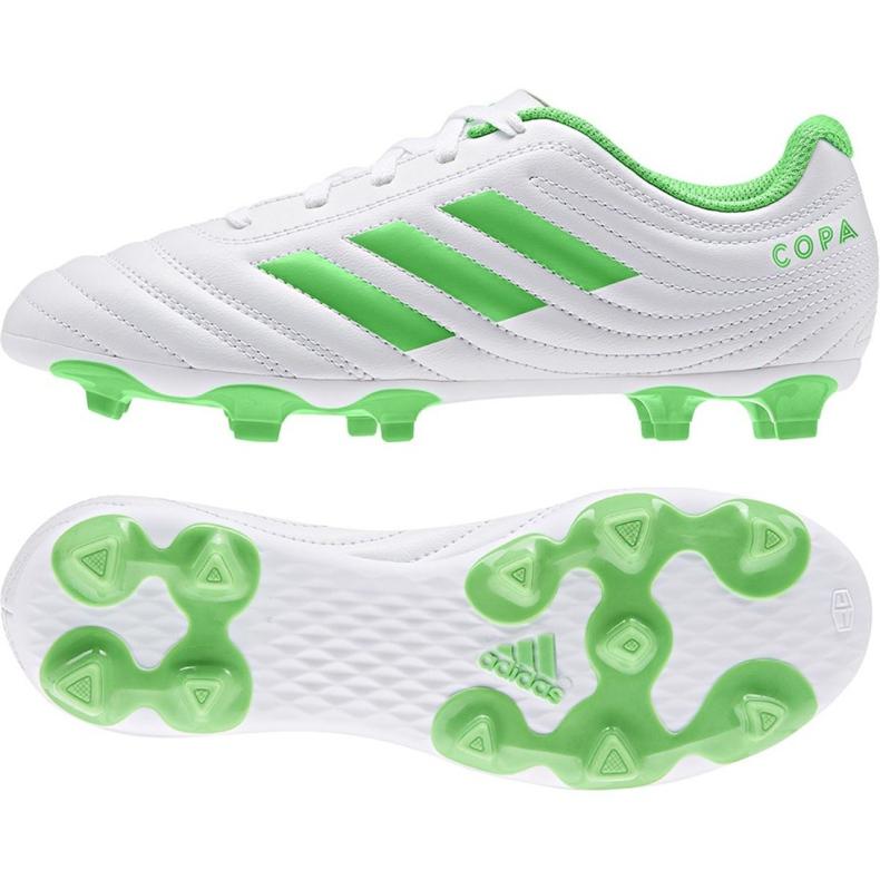 Buty piłkarskie adidas Copa 19.4 Fg Jr D98089 wielokolorowe białe