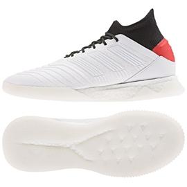 Buty piłkarskie adidas Predator 19.1 Tr M F35619