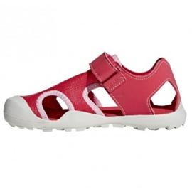 Różowe Sandały adidas Capitan Toey Jr BC0702
