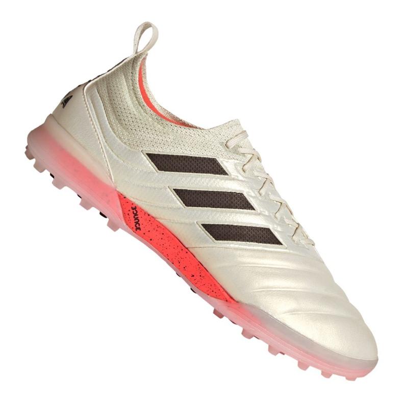 Buty piłkarskie adidas Copa 19.1 Tf M BC0563 biały beżowy