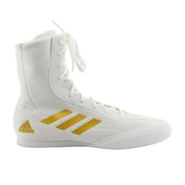 Białe Buty bokserskie adidas Box Hog Plus
