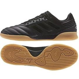 Buty halowe adidas Copa 19.3 In M F35501