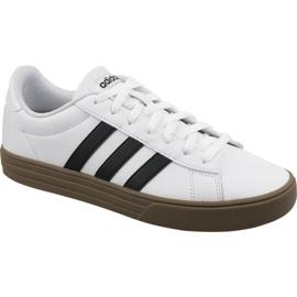 Białe Buty adidas Daily 2.0 M F34469