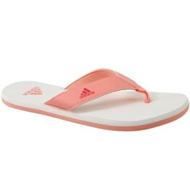 Pomarańczowe Japonki adidas Beach Thong 2 Jr CP9379