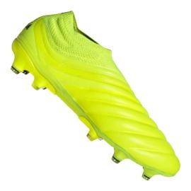 Buty piłkarskie adidas Copa 19+ Fg M F35515