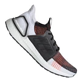 Buty biegowe adidas UltraBoost 19 m M G27519 wielokolorowe