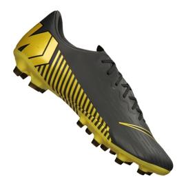 Buty piłkarskie Nike Vapor 12 Pro AG-Pro M AH8759-070