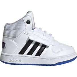 Białe Buty adidas Hoops Mid 2.0 I Jr EE8551
