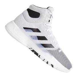 Buty adidas Pro Bounce Madness 2019 M BB9235 białe biały