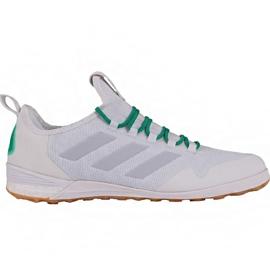 Buty piłkarskie adidas Ace Tango 17.1 In M BA8538 biały białe