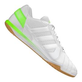 Buty piłkarskie adidas Top Sala Ic M FV2558 biały, zielony białe
