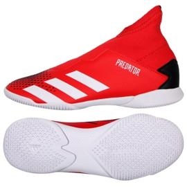 Buty halowe adidas Predator 20.3 Ll In Jr EF1952 czerwone wielokolorowe