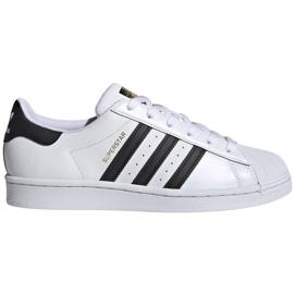 Buty adidas Superstar W FV3284 białe