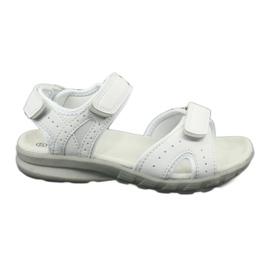 Sandały sportowe American Club HL15/20 white białe