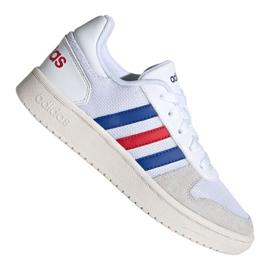 Buty adidas Hoops 2.0 Jr FW9120
