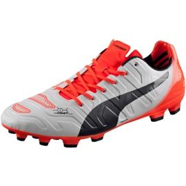 Buty piłkarskie Puma Evo Power 1.2 Ag 103213 05 szare