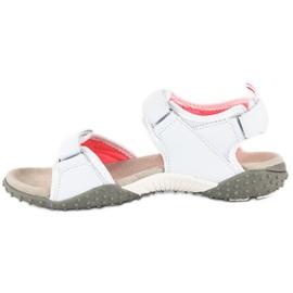 American Club Sportowe sandały american białe 3